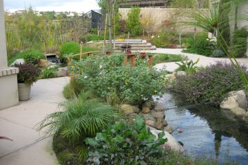 Back yard stream and bridge landscaping and construction