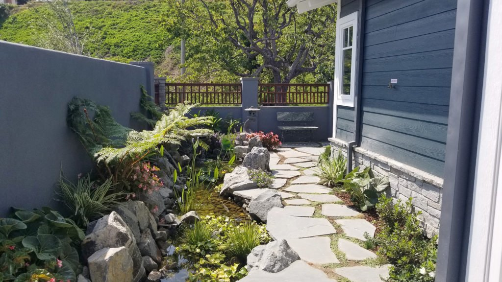Tropical side yard design with pond and stone walkway